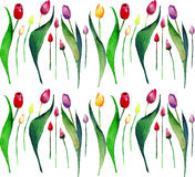 Bright beautiful spring vertical  pattern of tulips red yellow pink purple lavender flowers watercolor. Hand sketch Stock Image