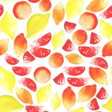Bright beautiful tasty yummy summer tropical citrus fruits sliced and whole lemons and grapefruit watercolor. Hand sketch Stock Photo