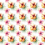 Bright beautiful tender sophisticated lovely tropical hawaii floral summer pattern of a tropic light pink and yellow hibiscus and Stock Image