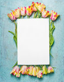 Bright beautiful tulips bunch with water drops on blue background with blank white card, top view, frame, place for text, vertical Royalty Free Stock Images
