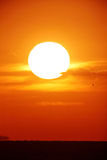 Bright big sun on the sky. With yellow orange red gradation colors, 500mm + teleconverter(×2 Stock Images