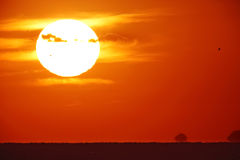 Bright big sun on the sky. With yellow orange red gradation colors, 500mm + teleconverter(×2 Royalty Free Stock Photo