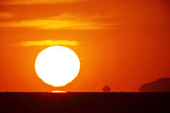 Bright big sun on the sky Royalty Free Stock Images