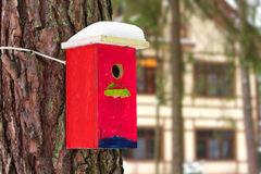 Bright birdhouse. Bright birdhouse nailed to a tree. Picture taken against a background of the cottage Stock Photography