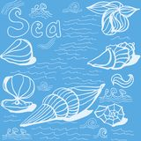 Bright blue card with hand painted shells. Bright blue background with sea shells, seaweed and waves Vector Illustration