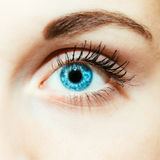 Bright Blue Eye Close Up. Female Face Stock Images
