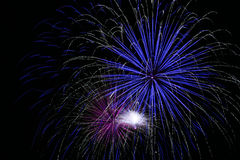 Bright Blue Fireworks Royalty Free Stock Photo
