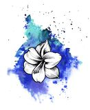 A bright blue formless watercolor blot. Rose ink flower line graphic royalty free illustration