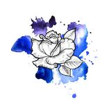 A bright blue formless watercolor blot. Rose ink flower line graphic stock illustration