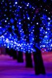 Bright blue holiday lights Stock Photos