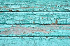 Bright blue paint. Old dark boards. Wooden wall. Interesting color Royalty Free Stock Photography