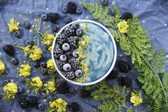 Free Bright Blue Superfood Smoothie Bowl Royalty Free Stock Photography - 144863587