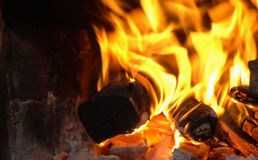 Bright blur flame of a bonfire Royalty Free Stock Images