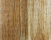 Bright Board of larch with a distinctive pattern Royalty Free Stock Photos