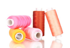 Bright bobbin thread isolated Stock Image