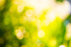Bright bokeh Royalty Free Stock Images