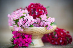 Bright bouquet of carnations Stock Photo