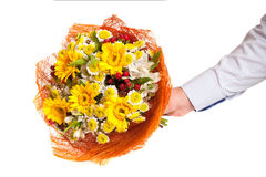 A bright bouquet of cut flowers in man's hand Royalty Free Stock Image