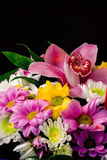 Bright bouquet of flowers of different sorts Royalty Free Stock Photos