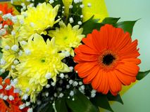 Bright bouquet of flowers-Gerbera Daisies and chrysanthemums stock photo