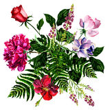 Bright bouquet from flowers, watercolor Royalty Free Stock Images