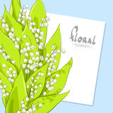 Bright bouquet of lilies Royalty Free Stock Image