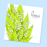 Bright bouquet of lilies Stock Photos