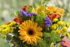Bright bouquet. Of orange gerberas Royalty Free Stock Photography
