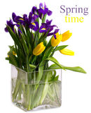 Bright bouquet of spring flowers Royalty Free Stock Photos