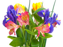 Bright bouquet Royalty Free Stock Photography
