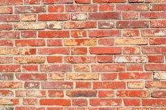 Bright brick Stock Photography