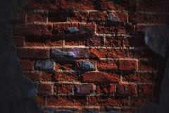 Bright brick Royalty Free Stock Images