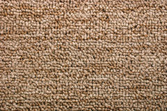 Bright brown carpet (Texture) Royalty Free Stock Image