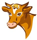 Bright brown smiling cow portrait. Isolated illustration Royalty Free Stock Photos