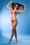 Bright brunette model Stock Photography