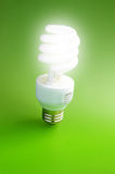 Bright bulb Royalty Free Stock Photos