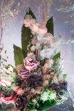 Bright bunch in icy composition Royalty Free Stock Photo