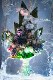 Bright bunch in icy composition Royalty Free Stock Images