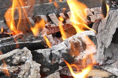 Bright burning fire of wood at fireplace 20441 Stock Image