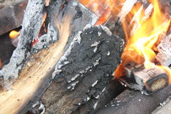Bright burning fire of wood at fireplace 20420 Stock Photos