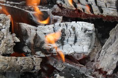 Bright burning fire of wood at fireplace 20447 Stock Photos
