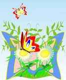Bright butterflies. Vector illustration two bright beautiful butterflies Stock Images