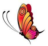 Bright butterfly Royalty Free Stock Image