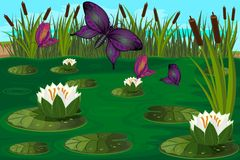 Bright butterfly fly in the swamp among the lilies Stock Image