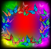 Bright butterfly frame Royalty Free Stock Images