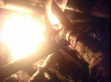 Bright camp fire close up Royalty Free Stock Photography