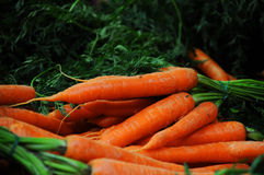 Bright carrots at market stall Stock Photo