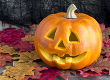 Bright carved pumpkin head on halloween Stock Image