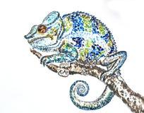 Bright chameleon illustration Royalty Free Stock Images