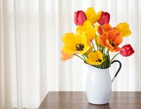 Bright and Cheerful Spring Tulip Bouquet in a White Metal Vase on dark wood and against White Curtain Background. With room or space for copy, text, your words Stock Photos